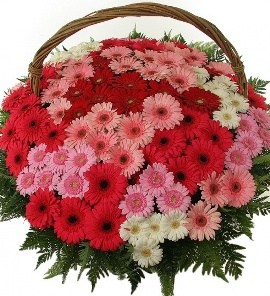 BIG Bright Basket of 101 Blooms