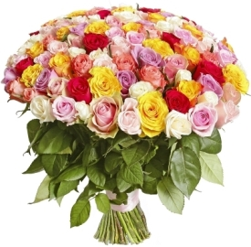 Just 101 Colorful Roses