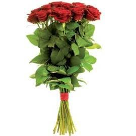 Красные Королевские Розы