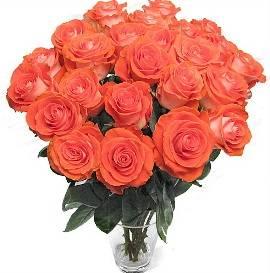 Букет из 37 персиковых роз