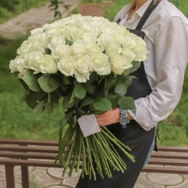 71 White Roses