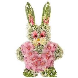 Cute Orchid Bunny