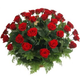 Sympathy Basket of 50 Red Roses