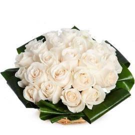 Красота роз