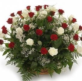 Карзина из 90 Красных и Белых Роз