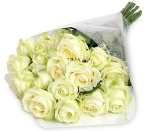 Белые королевские розы