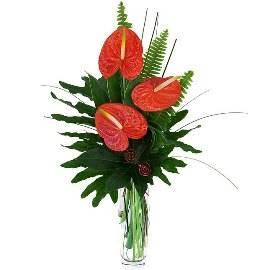 Bouquet of Anthoriums