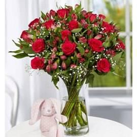 Beauty of 55 Flowers