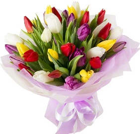21 Colorful Tulips illusioon