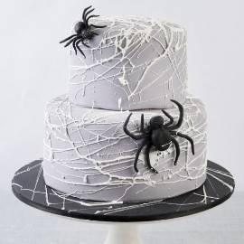 Spider's Life Cake