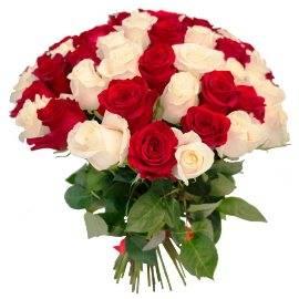 27 Red & White Roses