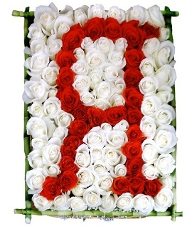 Special Letter of 155 Roses