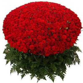 The Red Beauty For  YOU!