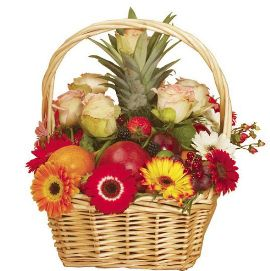 Fruits & Flowers