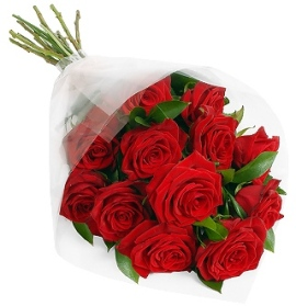 Red  Roses Passion