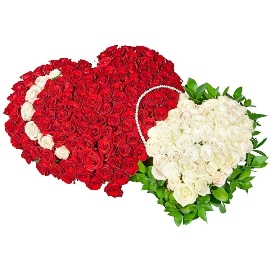 Heart in Heart with 155 Roses