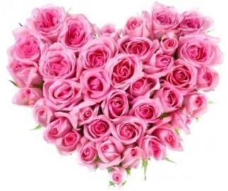 Прекрасный розовый