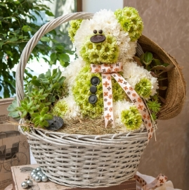 Cute Bear Sitting in the Basket