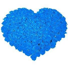 Blue Roses Heart of 101 Roses