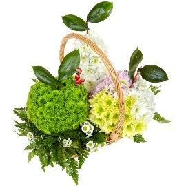 Floral Fruits