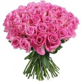 Превосходные Розовых Роз