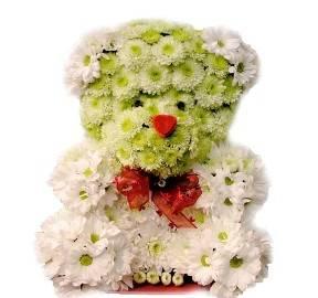 Fluffy Floral Bear