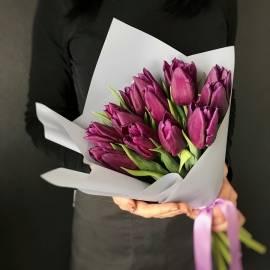 19 Purple Tulips