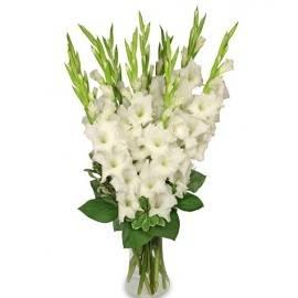Букет белых гладиолусов в вазе