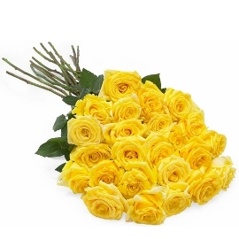 25 Assorted Yellow Roses