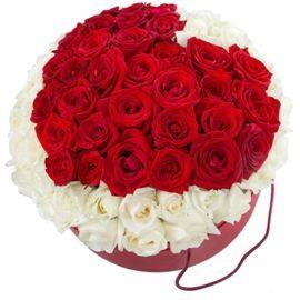 77 Bright Roses