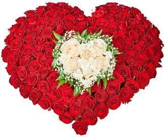 Love is Splendor