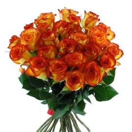 Yellow-Orange Roses