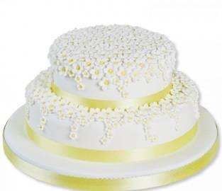Торт белая маргаритка