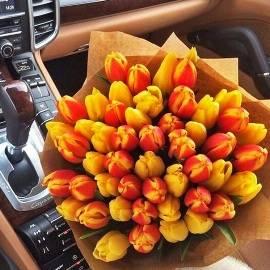 Stylish Sunny Tulips