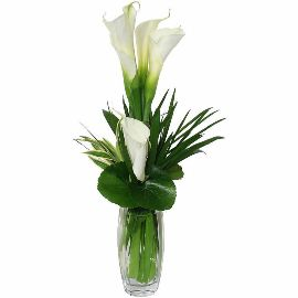Exquisite Beauty in Vase