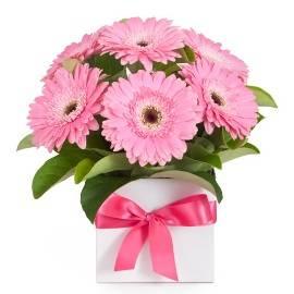 Милый Розовый Подарок