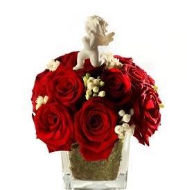 Guardian Angel & 21 Roses