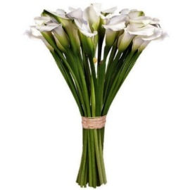 21 Essence Callas(90cm)