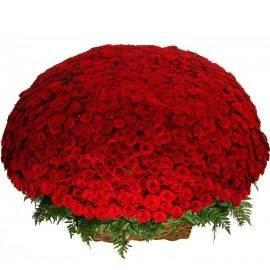Basket of 1001 Scarlet Elegance