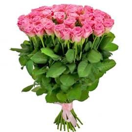 Long-stem Pink Roses