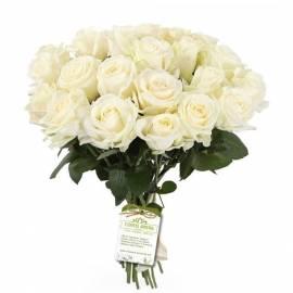 Bouquet «Warm Memories»
