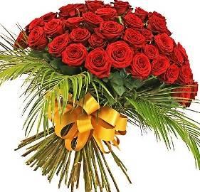 Red Regal Roses