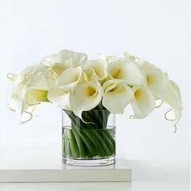55 Callas in Vase