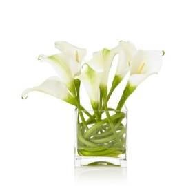 Pretty Callas in Vase