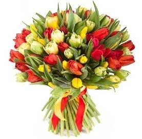 101 Glamorous Tulips