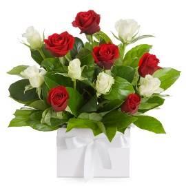 15 Roses Delight