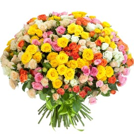 VIP Bouquet of Colorful Roses