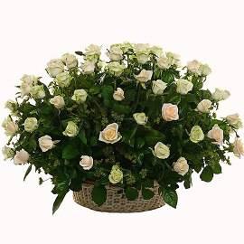 Սգո զամբյուղ 70 վարդերով