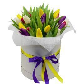 Happy Tulips Box