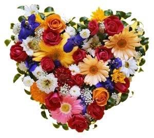 Цветущее Сердце из 55 Цветов